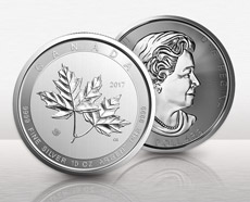 10 Oz Canadian Silver Maple Coins