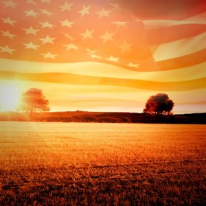 Digital image of American flag flying over wheat field