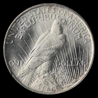 $1 Peace Dollar (Common Date, BU)